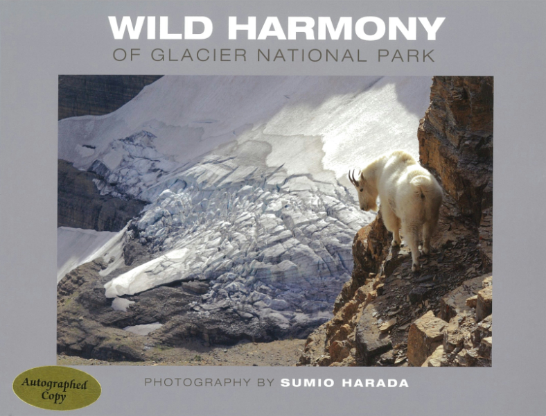 Wild Harmony Of Glacier National Park (SKU 1025171326)