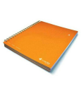 LIVESCRIBE 3 SUB NOTEBOOK WITH DIVIDERS - 150 SHEETS